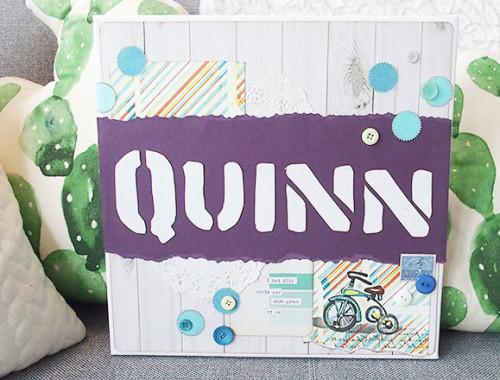 quinn01